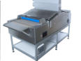Specialist UV conveyor - Jenton